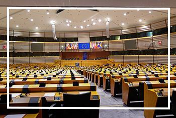 Posłowie do PE